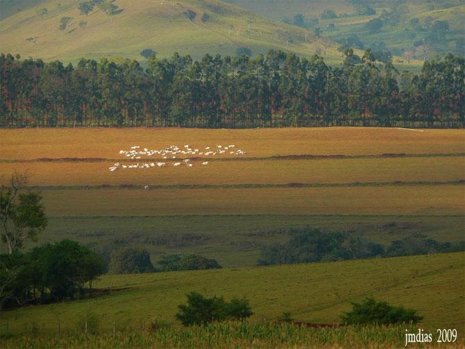مکان های دیدنی کشور برزیل