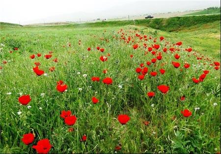 تاجیکستان,جاهای دیدنی تاجیکستان,