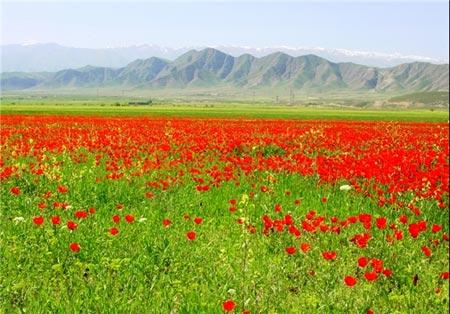 عکس های دیدنی از طبیعت زیبای تاجیکستان