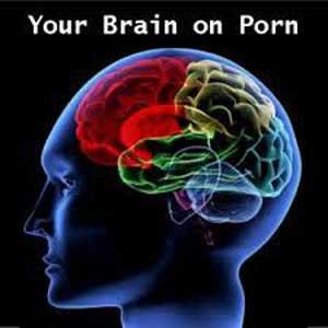 نگاه کردن به فیلم مستهجن باعث کوچکی مغز می شود!