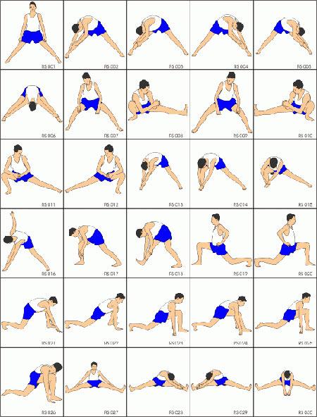 آموزش تصویری حرکات کششی