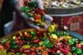 آداب و رسوم قدیمی ها در عید فطر