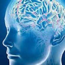 راه هایی برای تقویت حافظه