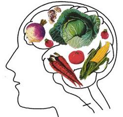 علت گیاهخوار بودن انسان,دانستنیهای علمی