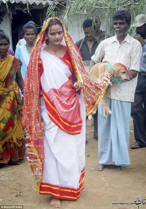 ازدواج دختر جوان هندی با سگ!