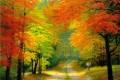 اس ام اس فصل پاییز (4)