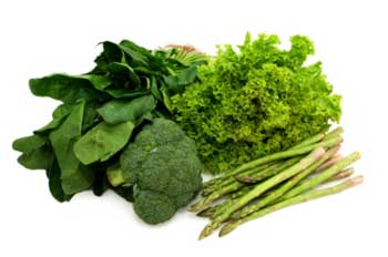 رژیم غذایی, دستگاه ایمنی بدن