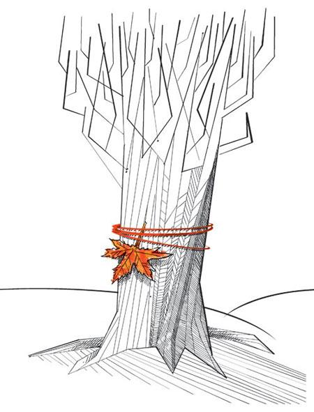 کاریکاتور پاییز