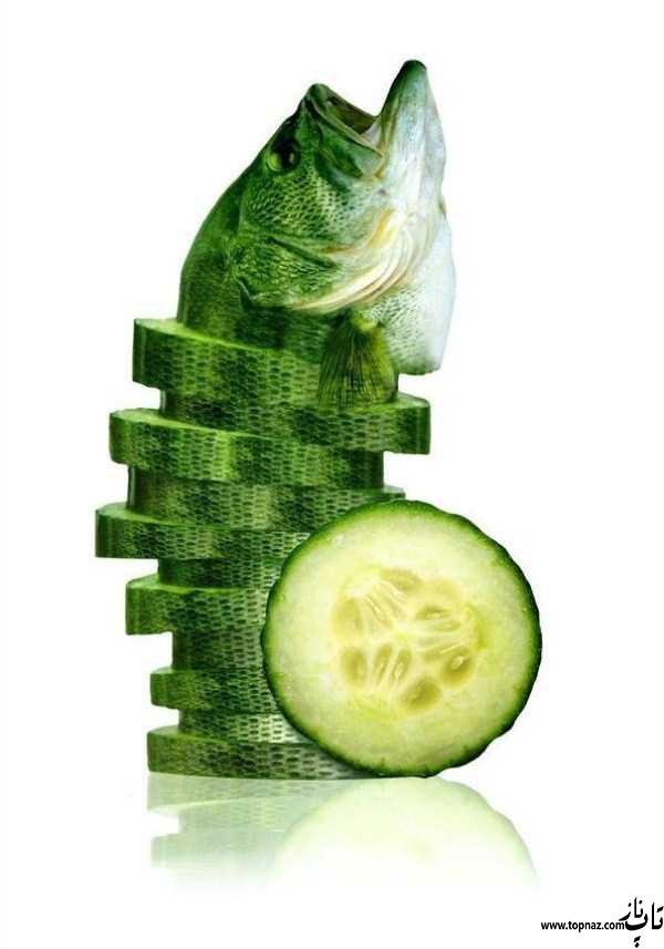 عکس های خنده دار ترکیب حیوانات و میوه جات!