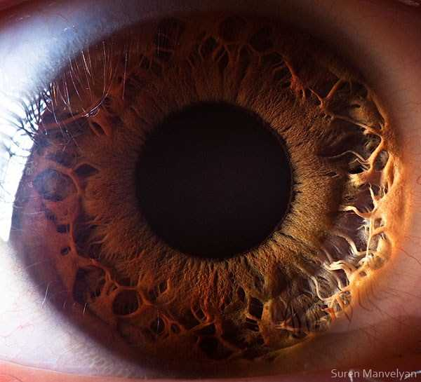 عکس چشم انسان, تصاویر زیبای چشم