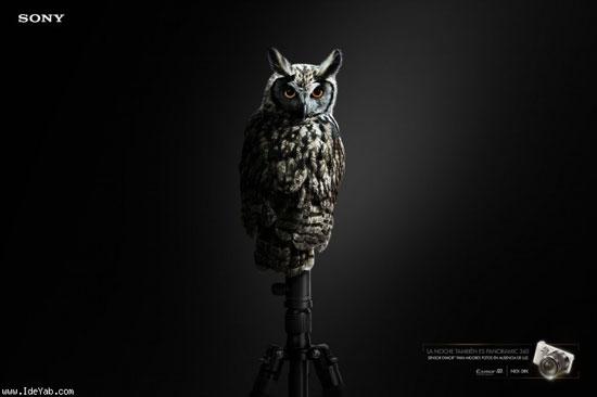 عکس: تبلیغات بسیار جالب و خلاقانه (20)