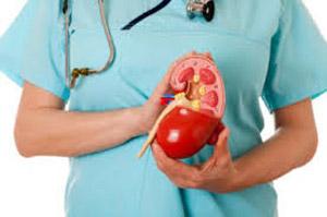 حفظ سلامت کلیه ها, بیماریهای کلیوی