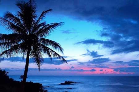 جزیره مائویی