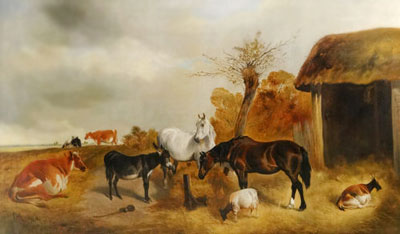 معمای فروش حیوانات