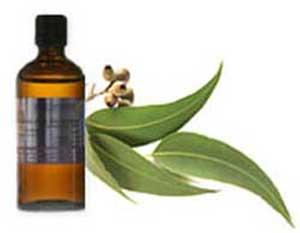 ماده ضدعفونی کننده طبیعی,دارو های گیاهی ضدعفونی کننده