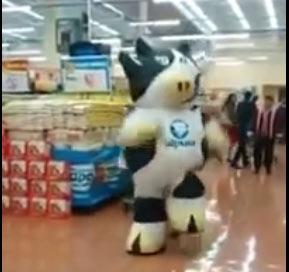رقص گاو