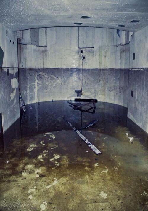 تصاویر فوق العاده وحشتناک و باورنکردنی که بصورت اتفاقی گرفته شده اند!