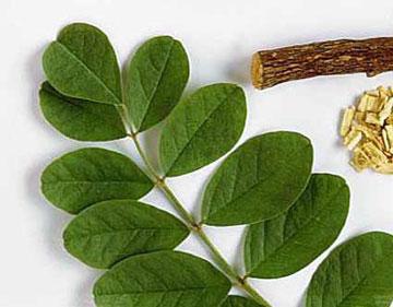 رفع بوی بد بدن با داروهای گیاهی