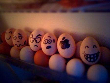 عکس های جالب و خنده دار تحم مرغ ها