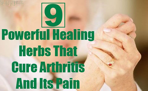 درد افراد سالمند را با داروهای گیاهی تسکین دهید