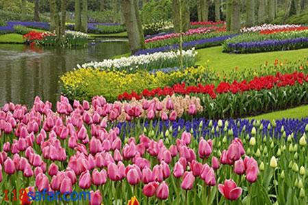 جالبترین باغهای دنیا،قشنگترین باغهای دنیا