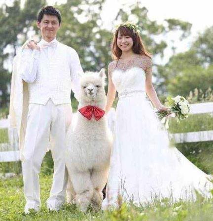 عکس های عجیب ترین ساقدوش عروس!