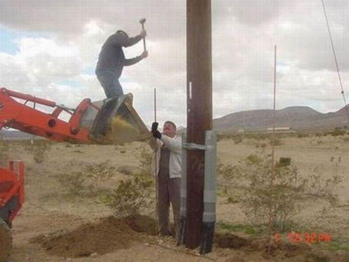 عکس های توپ از سوژه های خنده دار و احمقانه