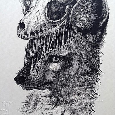 عکس طراحی حیوانات با مداد سیاه