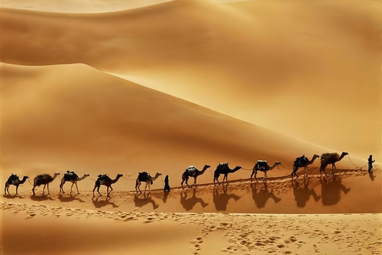 بیابان ربع الخالی در عربستان