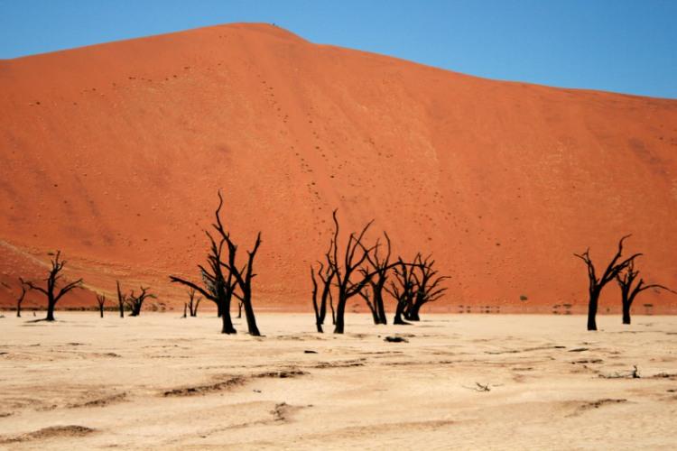 بیابان نامیب در آفریقا