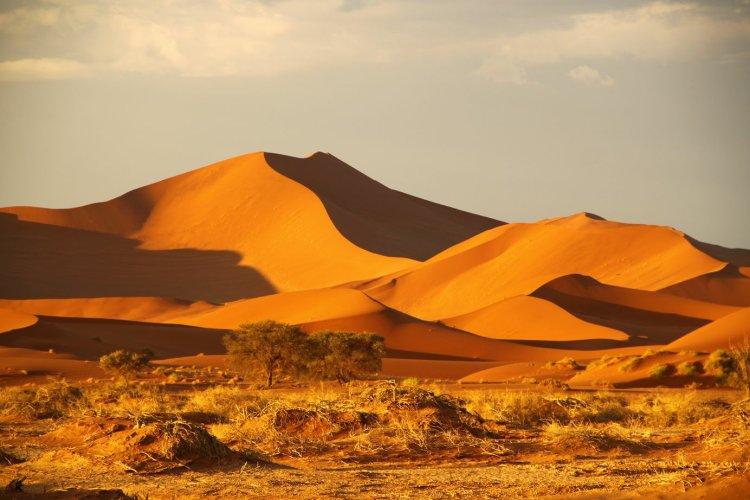 بیابان نامیب آفریقا