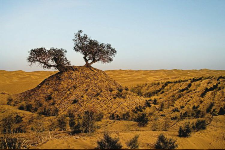 بیابان تکله مکان در چین