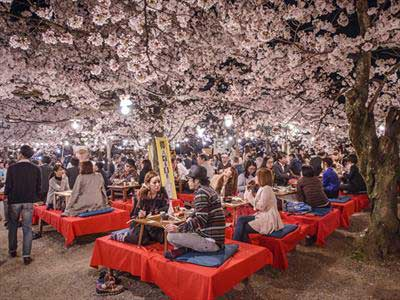 کیوتو ژاپن