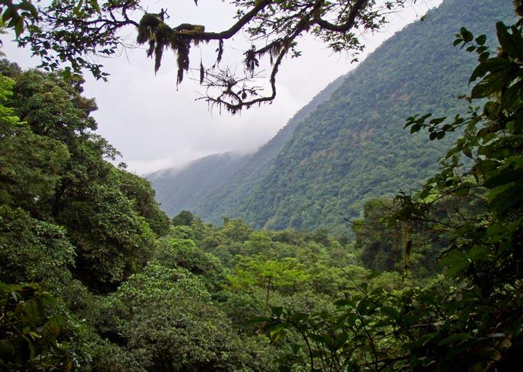 کشور کم بازدید گینه1