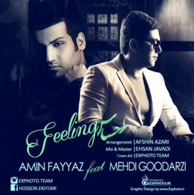 Amin-Fayyaz