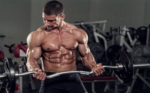 روزش های طبیعی افزایش هورمون تستوسترون