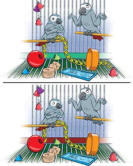 بازی تفاوت ها, معما با جواب