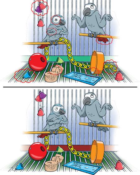 بازی تفاوتها و شباهتها, بازی اختلاف تصویر