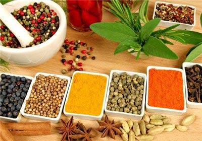 طب سنتی ایران،مزاج شناسی طب سنتی،مزاج ها در طب سنتی