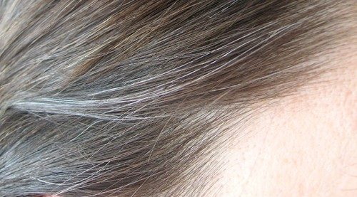 موی سفید