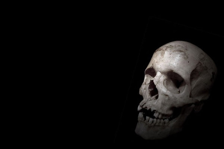 dead 3 c6459