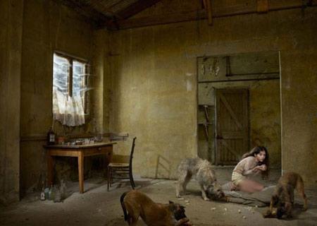 اخبار , اخبار گوناگون,تصاویر زندگی با سگ ها,زندگی با حیوانات