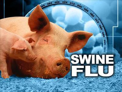 آنفلوآنزای خوکی چیست,آنفلوانزاي خوكي