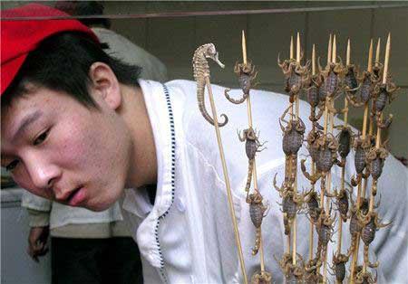 غذای عجیب کباب عقرب برای جذب گردشگر در چین!