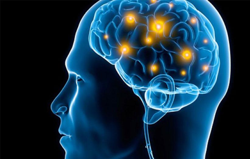 حافظه مغز انسان چند گیگابایت، ترابایت یا پتابایت است؟!