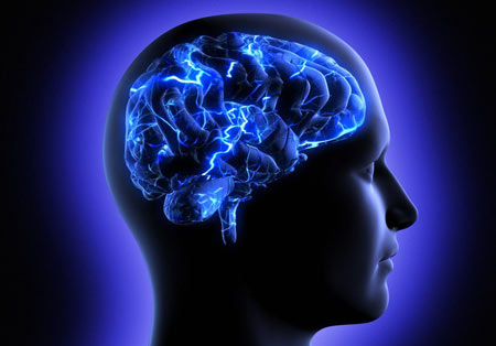 کاهش وزن,علت کند شدن روند کاهش وزن,مغز انسان