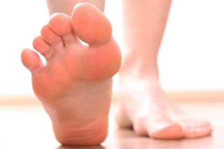 Leg (2)
