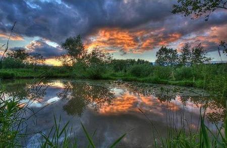عکس های زیبا و انرژی بخش طبیعت
