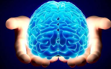 برای حفظ سلامتی مغز به این 10 نکته عمل کنید