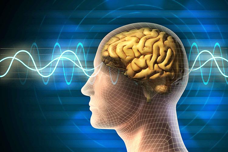 نظر پروفسور سمیعی در مورد ضرر امواج موبایل برای بدن انسان